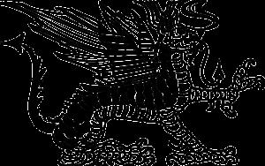 Zodia Dragon in 2019
